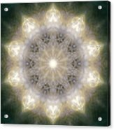 Ancient Light X Acrylic Print