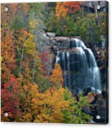 And The Leaves Will Fall Acrylic Print