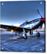 And Who Could Forget Betty Jean.  P51c Nl25imx  Acrylic Print