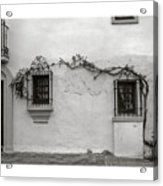 Andalucia Wall Acrylic Print