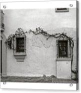 Andalucia Wall Acrylic Print
