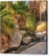 Andreas Canyon Babble Acrylic Print