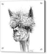 Andrew Acrylic Print