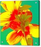 Andy Warhol Inspired Yellow Flower Acrylic Print
