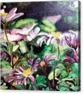 Anemones Japonaises Acrylic Print