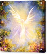 Angel Descending Acrylic Print