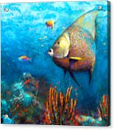 Angel Fish Acrylic Print