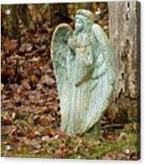 Angel In The Woods Acrylic Print by Danielle Allard