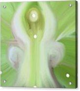 Angel Of Hearthealing Acrylic Print