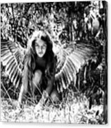 Angel Of The Wild Acrylic Print