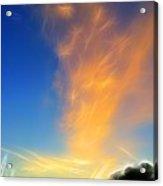 Angel Sparks Acrylic Print