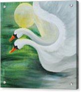 Angel Swans Acrylic Print