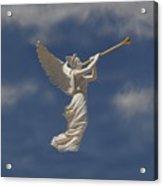 Angels Trumpet Acrylic Print