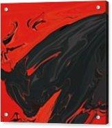 Angry Bull 2 Acrylic Print