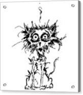 Angst Cat Acrylic Print