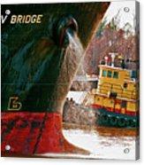 Anichkov Bridge Acrylic Print