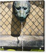 Animal Fountain Head Acrylic Print by Teresa Mucha