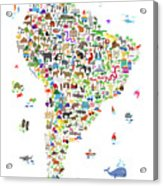 Animal Map Of South America For Children And Kids Acrylic Print