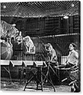 Animal Tamer, 1930s Acrylic Print