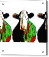 Animals Cows Three Pop Art Cows Warhol Style Acrylic Print