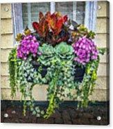 Annapolis Flower Box Acrylic Print