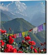 Annapurnas And Prayer Flags Acrylic Print