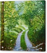 Annecy Forest Afternoon Acrylic Print
