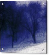 Another Blue Day Acrylic Print