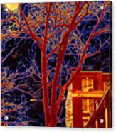 Another Brooklyn Night Acrylic Print