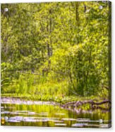 Another Day At The Lake Acrylic Print