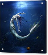Another Miss-understood World I Acrylic Print