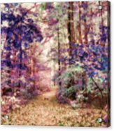 Another Season Xiii Acrylic Print