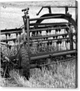Rake The Hay Acrylic Print