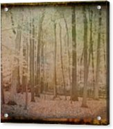 Antique Amber Golden Woods Acrylic Print