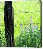 Antique Fence Post Acrylic Print