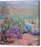 Anza Angel Cactus Acrylic Print