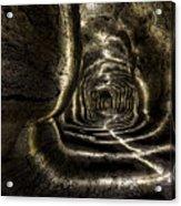 Ape Cave Acrylic Print