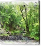 Appalachian Creek Acrylic Print