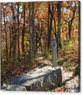 Appalachian Trail In Shenandoah National Park Acrylic Print