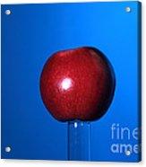 Apple Before Bullet Impact Acrylic Print