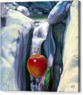 Apple Falls Acrylic Print