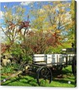 Apple Farm Cart Acrylic Print