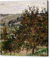 Apple Trees Near Vetheuil Acrylic Print by Claude Monet