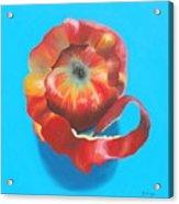 Apple Twist Acrylic Print