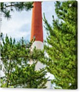 Approach To Barnegat Light Acrylic Print