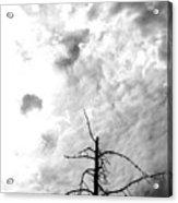 Approaching Storm Acrylic Print
