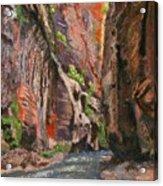 Apricot Canyon 2 Acrylic Print