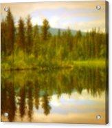 Apricot Reflections Acrylic Print
