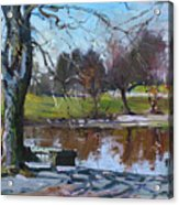 April 09 2011 Acrylic Print