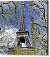 April In Paris Acrylic Print